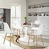 Aingoo Modern Design Dining Chairs Set of 4 Dining Kitchen Lounge Office Room Chairs with Metal Legs and Plastic Back Seat White