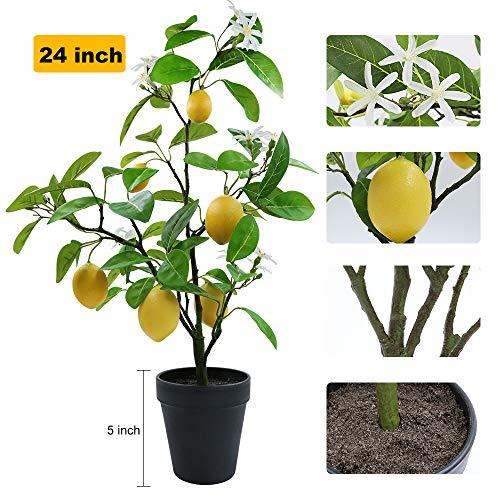 XiaZ Künstlicher Zitronenbaum mit Blume, 61 cm, Kunstpflanze für Zuhause, Wohnzimmer, Esszimmer, Badezimmer, Dekoration, künstliche gelbe Zitronenfrüchte und weiße Kunststoffblumen im Übertopf