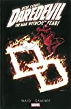 Daredevil 5: The Man Without Fear