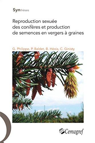 reproduction-sexuee-des-coniferes-et-production-de-semences-en-vergers-a-graines