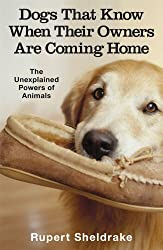 Dogs That Know When Their Owners Are Coming Home by Rupert Sheldrake (2000-09-07)