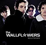 Songtexte von The Wallflowers - Red Letter Days