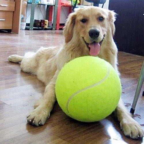 Alxcio Giant Hundespielzeug Bälle Robust Pet Tennis Ball für Kleine HundeTennisball für - Tennisball Hundespielzeug