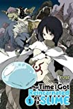 That Time I Got Reincarnated as a Slime, Vol. 1 (That Time I Got Reincarnated as a Slime (light novel), Band 1)