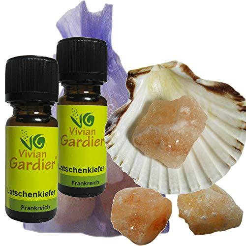 Latschenkiefer Öl ätherisch + NATURREIN 2 x 10ml von VIVIAN GARDIER aus kontrolliertem Anbau #50009 | 7-teiliges Aromatherapie Duft-Set mit Muschel, 3 x Sole-Kristalle zum Beduften, Duftsäckchen. -