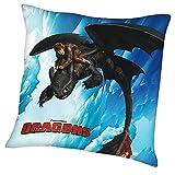 Dragons - Kissen Kinder Kuschelkissen Dekokissen Ohnezahn 40x40cm