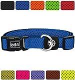 DDOXX Hundehalsband Air Mesh in vielen Farben & Größen für kleine & große Hunde | Halsband Hund Katze Welpe | Katzenhalsband klein | Hunde-Halsbänder breit Leuchtend | Blau, M