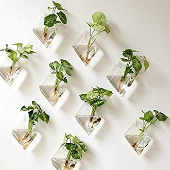 mkouo 2 st ck glas zum aufh ngen wand vase flower pflanztopf beh lter wasser pflanzk bel home. Black Bedroom Furniture Sets. Home Design Ideas
