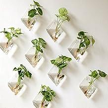 Mkono 2 Stück Glas zum Aufhängen Wand Vase Flower Pflanztopf Behälter Wasser Pflanzkübel Home Office Dekoration–Diamant