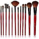 Best Shany Ensembles Brosse Maquillage - SHANY Kit professionnel de pinceaux cosmétiques 13 pièces Review