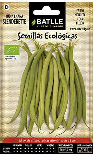 Semillas Ecológicas Leguminosas - Judía Enana Slenderette - ECO - Batlle