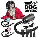 Wonderlife 2800W Hairdryer Hair Dryer Adjustable Fur Blower Heater Pet Dog Grooming Black