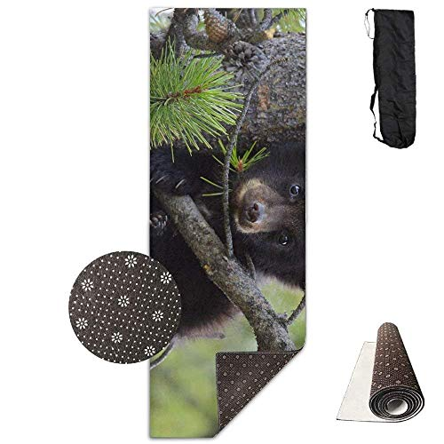 Deglogseccce Yogamatte/Übungsmatte, Suitable as a Yoga, Pilates and Camping Mat Animal Black Bear Cub In A Tree Deluxe Yoga Mat Aerobic Exercise Pilates 180cm x 61cm -