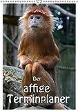 Der affige Terminplaner (Wandkalender 2019 DIN A3 hoch): Der Terminplaner nicht nur für Affenfans (Planer, 14 Seiten ) (CALVENDO Tiere)