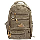 Bagathon India Beige Canvas Backpack with Water and Dust Cover