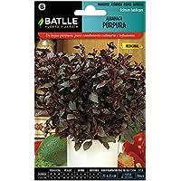 Semillas Aromáticas - Albahaca Púrpura - Batlle
