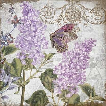 feelingathome-imprimer-sur-toile-100coton-souvenirs-naturelles-2-cm77x77-affiche-reproduction-gravur