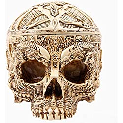 YANGTT Cráneo de resina