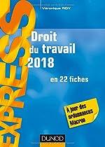 Droit du travail 2018 - 22e éd. - en 22 fiches - A jour des ordonnances Macron de Véronique Roy