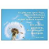 TRIOSK Metallschild Pusteblume mit Spruch Gestern und Morgen, lustiges Deko Geschenk für Frauen, Blechschild 20x30 cm