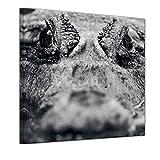 Bilderdepot24 Kunstdruck - Krokodil - Bild auf Leinwand - 40 x 40 cm - Leinwandbilder - Bilder als Leinwanddruck - Wandbild Tierwelten - Wildtiere - Alligator - Schwarz Weiss