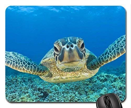 Green Leatherback Sea Turtle in The Ocean Off Maui Hawaii Mouse Pad, Mousepad (Oceans Mouse Pad)