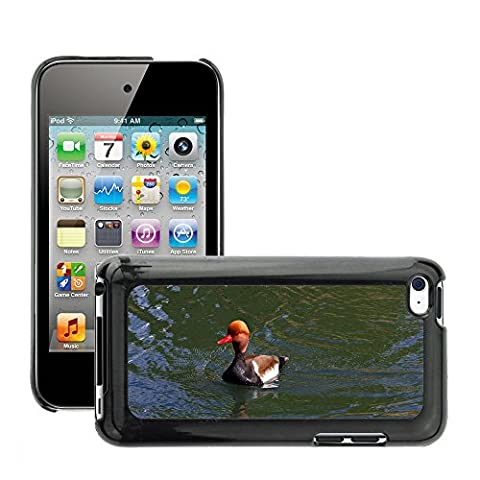 Just Phone Cover Hard plastica indietro Case Custodie Cover pelle protettiva Per // M00139732 Pochard Red Headed Pochard Canard // Apple ipod Touch 4 4G 4th