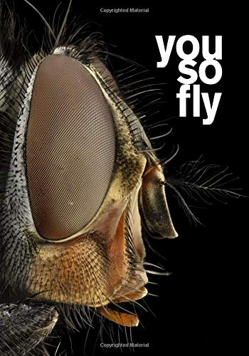 you so fly: 7x10 wide ruled notebook : fly bug insect : funny gift for husband wife boyfriend girlfriend best friend