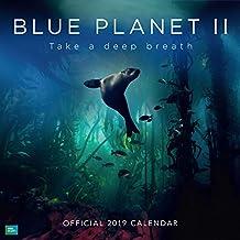 BBC Blue Planet 2019 Official Square Wall Calendar 30 x 30cm