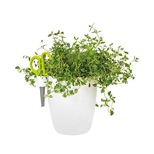 elho pot de fleurs - brussels herbes single l blanc - 17.8 x 14.9 x 15.9 cm