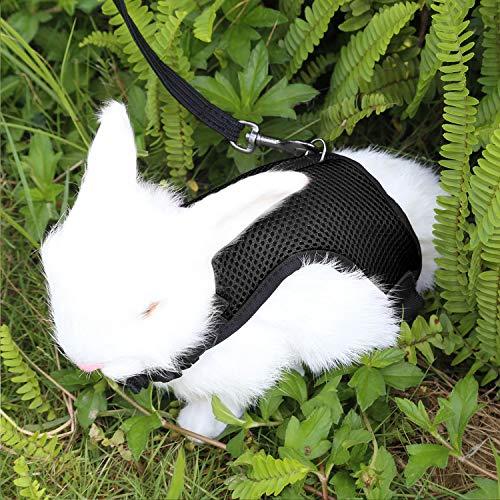 Verstellbares Weiches Kaninchen Geschirr mit Elastischer Leine für Kleines Tier Kitty Haustier Geschirr und Leine für Häschen Katze Little Pet Walking (L(Brust 28 -35cm), Schwarz)