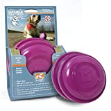 Bild: Kurgo Wurfscheibe Hundespielzeug 2 Stück Schwimmfähig Violett Winga Discs 2 Pack 00070