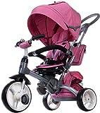 Dreirad Kinderwagen Baby Kind Lenkbar Little Tiger mit Griff Baldachin Gurten und Taschen Melange Rosa