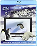 Antarctica Dreaming - Wildlife On Ice [Blu-ray] [2005] [2008] [Region Free]