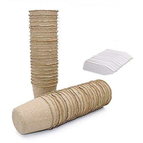 100 Stück Abbaubare Anzuchttöpfe runde Kleine 6 cm, 100 Stück Plastik Pflanzenetiketten weiß 1 x 5 cm