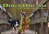 DOG'S DREAM - wovon Hunde träumen (Wandkalender 2019 DIN A2 quer): Amüsante Visualisierung von Hundeträumen (Monatskalender, 14 Seiten ) (CALVENDO Tiere)