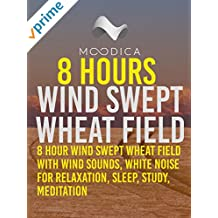 8 Hours: Wind Swept Wheat Field: 8 Hour Wind Swept Wheat Field with Wind Sounds, White Noise for Relaxation, Sleep, Study, Meditation [OV]