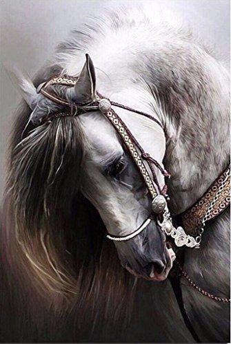 Nähen Muster Behälter (Igemy 25 * 30cm Pferd 5D DIY Diamant Stickerei Malerei Mosaik Kreuz Stich Diamant Zuhause Dekor (25 * 30cm))