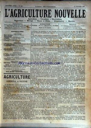 AGRICULTURE NOUVELLE (L') [No 565] du 15/02/1902 - AGRICULTURE PAR MARCHAND - BERTHOT - TROUDE - GUENAUX ET VIMEUX - HORTICULTURE PAR MAGNIEN - MOTTET - VITICULTURE PAR BATTANCHON ET ROY-CHEVRIER - ELEVAGE ET BASSE-COUR PAR BRECHEMIN ET GEORGE - LES PLANTATIONS DE CAFETIERS PAR CAYE -