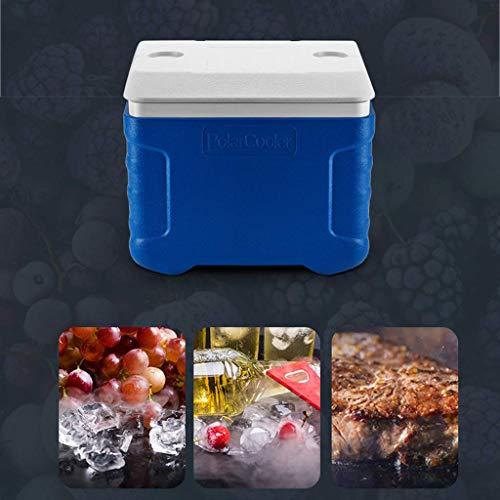 QE Refrigerador-enfriador autos Caja 90 litros ruedas