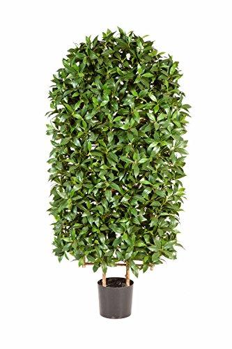 artplants Kunst-Lorbeerbaum Wand KAJUS, 2664 Blätter, grün, 120 cm – künstlicher Lorbeer/Kunstbaum