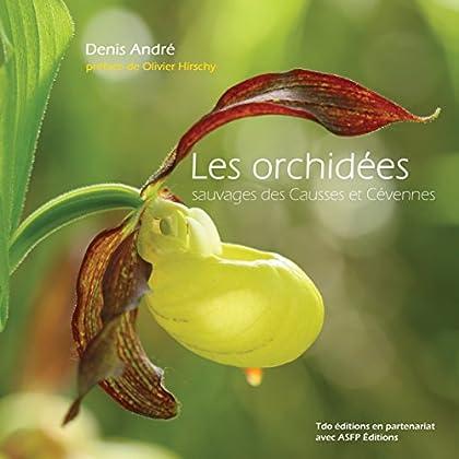 Les orchidées sauvages des Causses et Cevennes