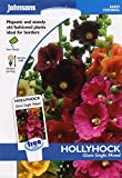 johnsons seeds - Pictorial Pack - Fiore - Malva Gigante Single Mix - 50 Semi
