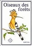 Oiseaux des forêts