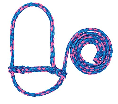 Weaver Leather Halfter für Tiere Polypropylen-Seil für Schafe, 35-7840-S12, Blue/Royal Blue/Rose -