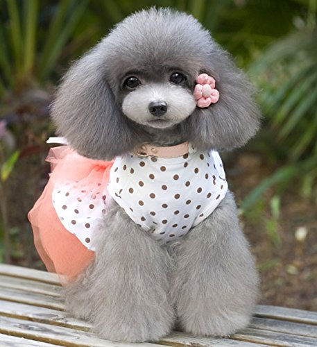 Imagen de smalllee _ _ _ _ _ _ _ _ _ _ _ _ _ _ _ _ _ _ _ _ de la suerte store dot gasa vestido de tutú falda flores lazo gato perro pequeño cachorro ropa disfraz de perro xs xl alternativa