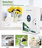 Ozon-Wasser- und Luftreiniger | Sterilisator für Wasser, Gemüse, Obst und mehr - 2