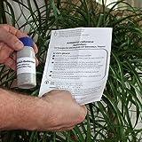 ACA Raubmilben - Nützlinge u. a. gegen Spinnmilben