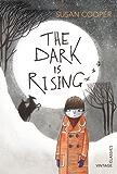 The Dark is Rising (Vintage Childrens Classics)