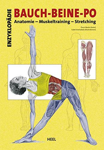 Enzyklopädie Bauch - Beine - Po: Anatomie - Muskeltraining - Stretching (German Edition)